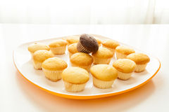 Tasty yellow muffins and chocolate muffin on top. Tasty muffins in the plate on the table near to window with natural sun light Royalty Free Stock Photos