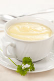 Tasty zucchini soup Stock Image