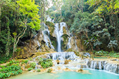 Tat Kuang Si Waterfalls i Laos Royaltyfri Fotografi