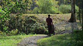 Tata chodzi z spacerowiczem w parku zdjęcie wideo