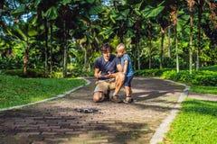 Tata i syn bawić się z trutniem, mężczyzna i chłopiec bawić się z lataniem, Obraz Stock