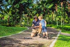 Tata i syn bawić się z trutniem, mężczyzna i chłopiec bawić się z lataniem, Obraz Royalty Free