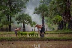 Tata i syn to jesteśmy stylem życia rodzinny rolnik przy wiejskim Azja fotografia stock