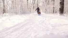 Tata niesie syn sannę w zima mroźnym dniu w drewnach zdjęcie wideo