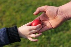 tata Wielkanoc jajka czerwony Obrazy Stock