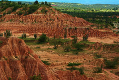 Tatacoa Desert, Colombia. The red slopes of the small Tatacoa Desert with some cacti and bushes in Southern Colombia close to Neiva, which is the second-biggest stock photography