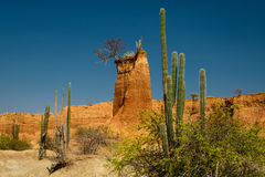 The Tatacoa desert, the driest place of Colombia. Sand Tower in Tatacoa desert, the driest place of Colombia stock image