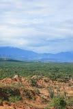 Tatacoa Desert. Vertical shot of the desert meeting the jungle, taken at Tatacoa desert in Colombia Royalty Free Stock Image