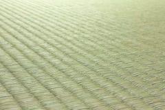Tatami giapponese Immagini Stock