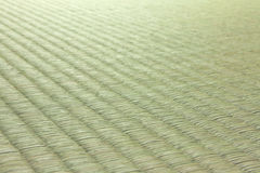 Tatami japonês Imagens de Stock