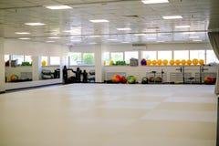 Tatami-Turnhallenkampfkünste lizenzfreies stockfoto