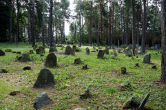 Tatar graveyard in Poland Royalty Free Stock Images