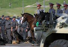 Tatarien überwachen Tage polizeilich. Pferde und Hunde in der Polizei Stockfotografie