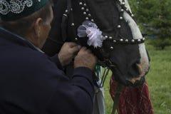 Tatarstan Ryssland hästen i den exploaterade festliga selet till en vagn På vagnen sitt en grabb med en flicka Sabantuy är a Arkivbilder
