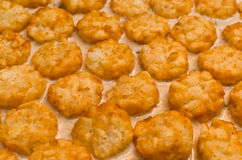 Tater Tots (Horizontal) Royalty Free Stock Photo