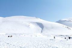 Tateyama Kurobe in alpi giapponesi, Giappone Fotografie Stock Libere da Diritti
