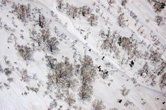 Tateyama Ropeway, snöig backe, avlövad trädspridning Royaltyfri Bild