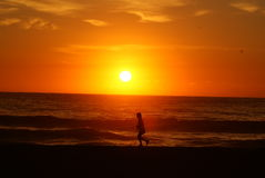 Tathra Sunrise Walker Royalty Free Stock Images