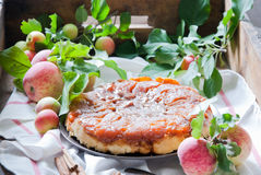 Tatin της Apple tarte Στοκ Εικόνες