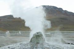 tatio гейзера поля Чили el Стоковые Изображения RF