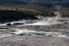 Tatio gerysers Stock Photography