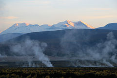 Tatio Geysers. High in Andes, Chile Royalty Free Stock Photos