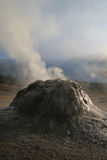 Tatio Geysers. High in Andes, Chile Stock Photo
