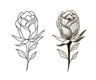 Tatoegeringsbloemen geplaatst het puntwerk vector illustratie
