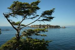 Tatoosh Island Royalty Free Stock Images