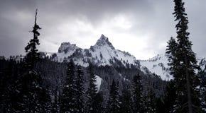Tatoosh Range Cascade Mountains Mt Rainier NP Royalty Free Stock Photos