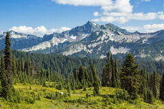 Tatoosh Range from Hiking Trail Stock Photos
