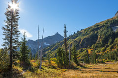 Tatoosh Rangle dans des couleurs d'automne Photos stock