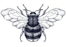 Tatouage d'abeille Tatouage de Dotwork Symbole mystique de diligence, d'économie, de pureté, d'immortalité, de fertilité et de ch illustration stock