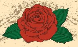 Tatouage de Rose sur le vieux fond avec des taches. Dans l'à l'ancienne Photo libre de droits