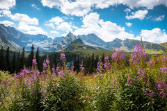 Tatra山国家公园在扎科帕内 免版税库存图片