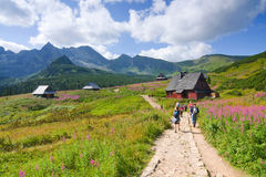 Tatra山的远足者 库存照片