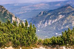 Tatra山看法从供徒步旅行的小道的 波兰 欧洲 免版税图库摄影