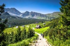 Tatra山看法从供徒步旅行的小道的 波兰 欧洲 库存照片