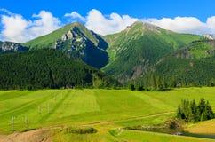 Tatra山美好的绿色夏天风景在Zdiar村庄,斯洛伐克 图库摄影