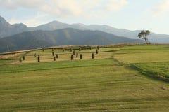 tatra βουνών κάπου Στοκ εικόνα με δικαίωμα ελεύθερης χρήσης