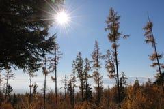 tatra высоких гор Стоковая Фотография RF