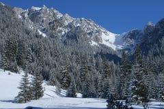 Tatra Fotografie Stock