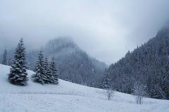 Tatra Fotografia Stock