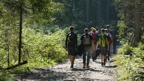 Путь к верхней части высоких гор Tatra стоковое изображение rf