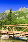 Tatra. Bridge over the creek in Tatra, Slovakia Stock Photos