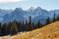 Tatra berg royaltyfria bilder