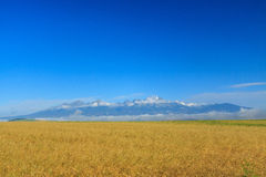 Tatra berg från ett avstånd. Royaltyfri Fotografi