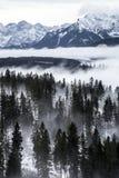 Tatra berg i vintern, landskap Royaltyfria Bilder