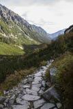 Tatra berg i vintern, landskap Royaltyfri Foto