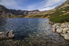 Tatra berg i vintern, landskap Arkivbild